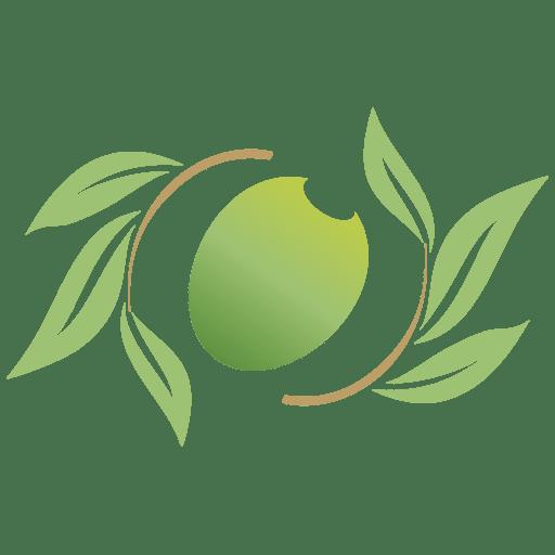 たまプラーザの整体|女性専門の治療院オリーヴボディケア
